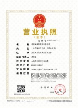 公司营业执照证书