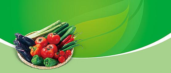 蔬菜广告背景