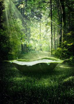 森林摄影H5背景
