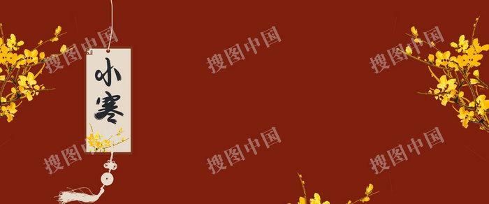 小寒簡約中國風菊花背景