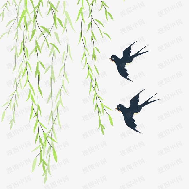 柳樹綠色柳條新柳燕子春二月三月