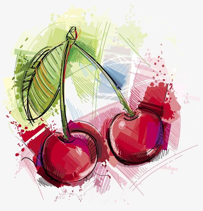 手绘水彩画樱桃
