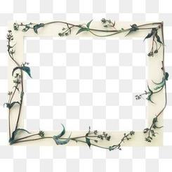 手绘相框边框剪影 植物装饰相框