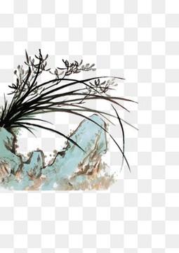 花草边角装饰