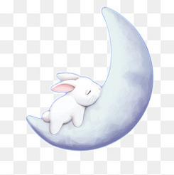 中秋节海报素材玉兔