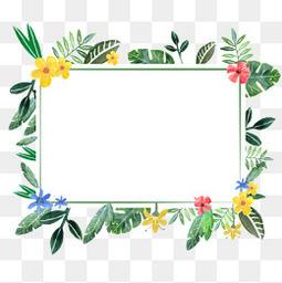 植物鮮花紋邊框PNG