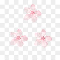 唯美清新樱花花朵元素