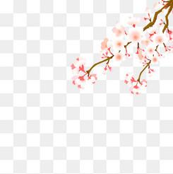 毕业季粉色樱花花边素材