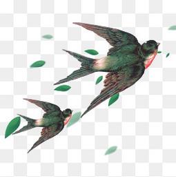 真实燕子春天素材清明节免扣矢量图