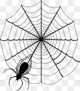万圣节元素蜘蛛网