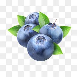 蓝莓精致PNG图片