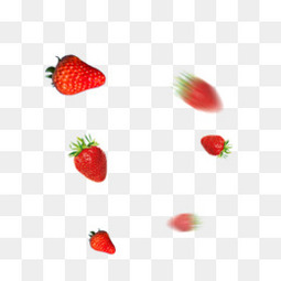 草莓新鲜水果