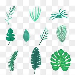 夏至小清新樹葉元素