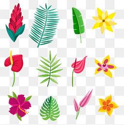 夏至小清新花朵树叶