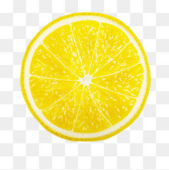 水果柠檬矢量图