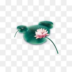 水墨荷花中国风矢量装饰图