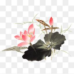 水墨荷花锦鲤