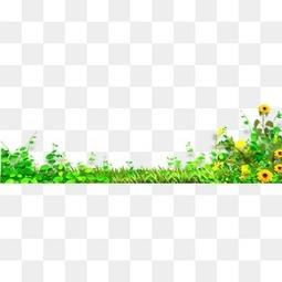 春天花瓣元素