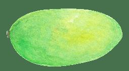 手绘热带水果芒果透明水果素材