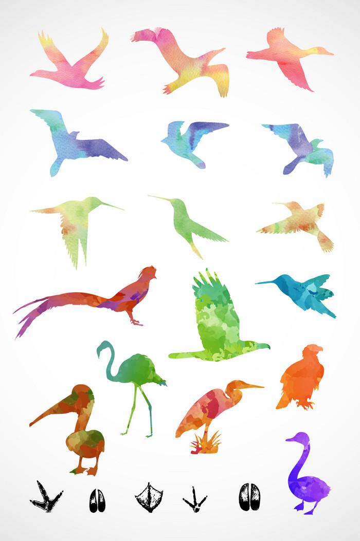 彩色飞鸟矢量素材